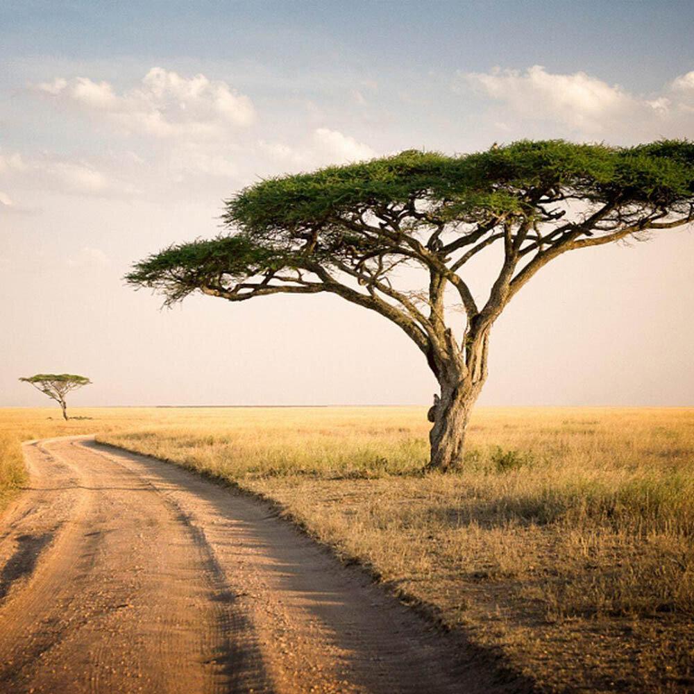 FAQ Tanzania visa
